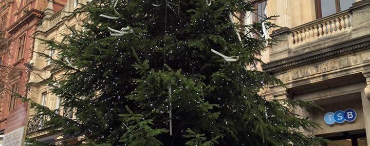 Rotary of Gloucester Tree of Light